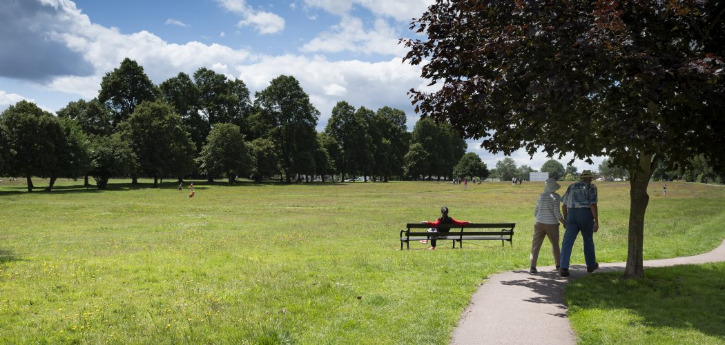 Photo of north common an elderly couple walking hand in hand and woman sitting on a bench enjoying the views out across to the avenue of trees